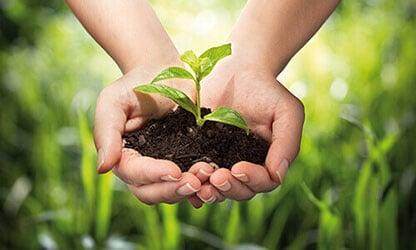 Pallet-Stabilization-Sustainability